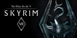 The Elder Scrolls V: Skyrim VR ( walk mode)